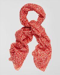 Jaeger - Red Silk Leopard Print Scarf - Lyst