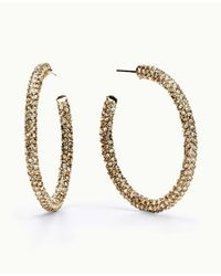 Ann Taylor | Metallic Micro Pave Hoop Earrings | Lyst