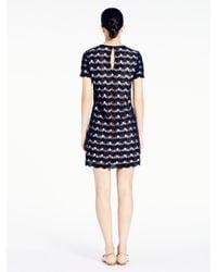 kate spade new york Black Virginia Lace Dress