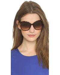 Jimmy Choo | Special Fit Patty Sunglasses - Nude Black/brown Gold | Lyst