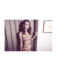 Morgan Lane | White Greta Bra Lipstick Vanilla | Lyst
