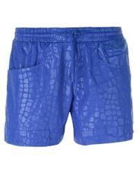 Adidas By Stella McCartney Blue Studio Crocodile Shorts