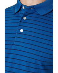 French Connection Blue Stripe Polo Shirt for men