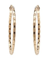 Lana Jewelry Metallic Hoop Earrings