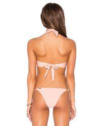 Sinesia Karol Pink Cla Bikini Bottom