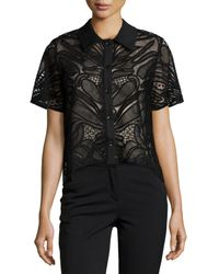 Alexis Black Lettie Short-sleeve Abstract Mesh-knit Top