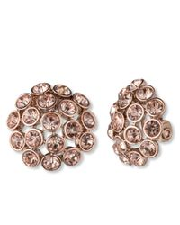 Anne Klein Pink Rose Gold-Tone Crystal Cluster Clip-On Earrings