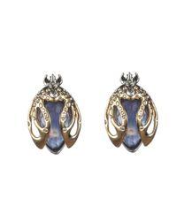Alexis Bittar Blue Jardin Mystã¨re Scarab Beetle Clip Earring You Might Also Like