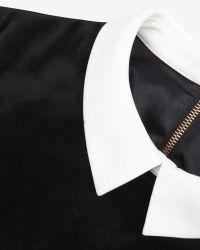 Ted Baker Black Velvet Collar Detail Dress