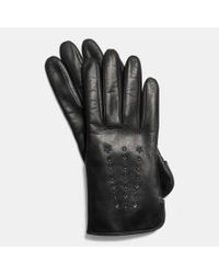 COACH | Black Star Studded Leather Glove | Lyst