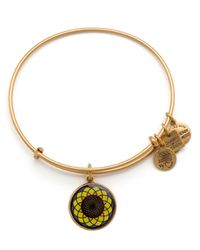 ALEX AND ANI | Metallic Sunflower Expandable Wire Bangle, Charity By Design Collection | Lyst