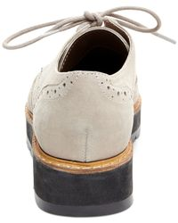 Steve Madden Gray Tracey Lace-up Oxfords