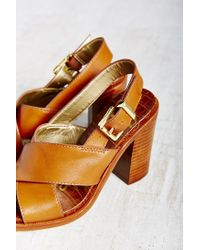 Sam Edelman Brown Ivy Sandal