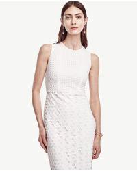 Ann Taylor White Petite Geo Eyelet Dress