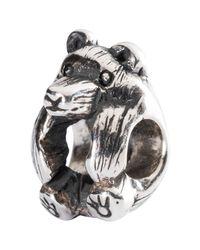 Trollbeads Metallic Sterling Silver Little Bear Charm