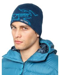 Arc'teryx Blue Bird Head Toque Wool Blend Hat for men