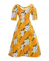 Tata Naka - Orange Wallpaper Full Skirt Dress - Lyst