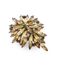DANNIJO - Brown Bella Clustered Marquis Ring - Lyst