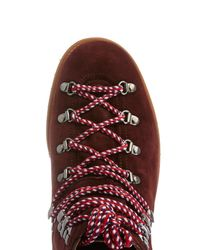 Moncler Purple Lace-Up Suede Ankle Boots