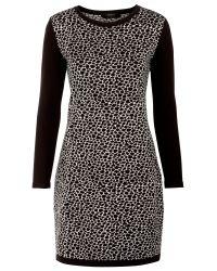 Weekend by Maxmara Black Ussita Knitted Dress