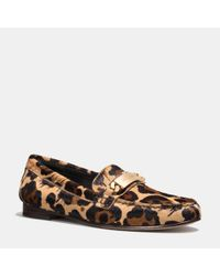 COACH Multicolor Kimmie Loafer