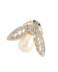 Brooks Brothers | Metallic Firefly Brooch | Lyst