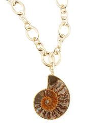 Devon Leigh | Brown Fossilized Shell Pendant Necklace | Lyst