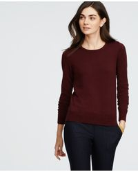 Ann Taylor | Purple Petite Button Shoulder Sweater | Lyst
