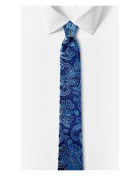 Express - Paisley Narrow Silk Tie - Cobalt Blue for Men - Lyst