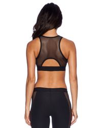 Blue Life Black Fit Silhouette Sports Bra