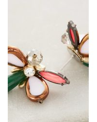 Anthropologie | Pink Adelis Earrings | Lyst