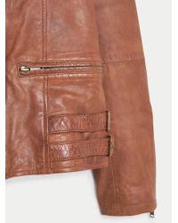 Violeta by Mango Brown Stitched Biker Jacket