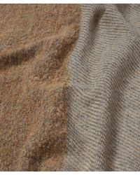 Lily and Lionel Brown Bailey Wool-blend Scarf