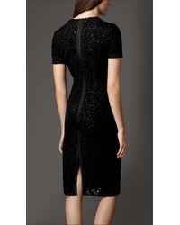 Burberry Black Floral Lace Shift Dress