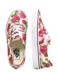 Vans Multicolor Sneaker