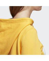 Adidas Orange Trefoil Hoodie