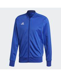 Adidas Condivo 18 Jacke in Blue für Herren