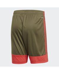 Adidas Tastigo 19 Shorts in Natural für Herren