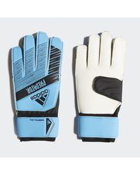 Guanti da portiere Predator Top Training di Adidas in Blue