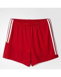 Regista 16 Drydye Shorts di Adidas in Red