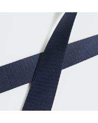 Adidas Blue Webbing Belt for men