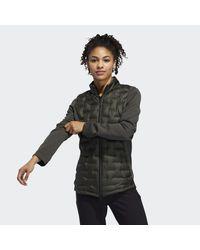 Adidas Green Frostguard Insulated Jacket