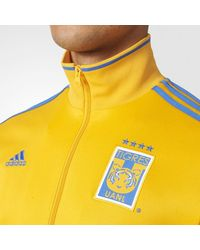 Adidas Yellow Tigres Uanl 3-stripes Track Jacket for men