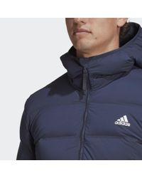 Adidas Helionic Soft Hooded Daunenjacke in Blue für Herren