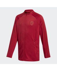Adidas FC Arsenal Anthem Jacke in Red für Herren