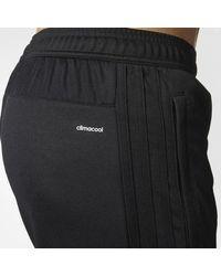 Adidas - Black New York City Fc Training Pants for Men - Lyst