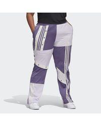 Adidas Purple Daniëlle Cathari Track Pants (plus Size)