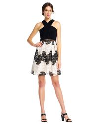 Adrianna Papell | Black Halter Fit And Flare Dress With Floral Lace Stripe Skirt | Lyst