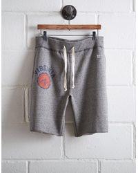 Tailgate Gray Men's Uva Cavaliers Cut-off Fleece Short for men