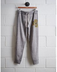 Tailgate Gray Men's Notre Dame Slim Fleece Sweatpant for men